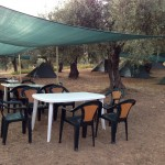 camping under the olive trees